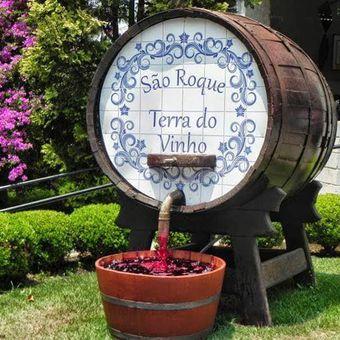 Tour do Vinho e Compras - São Roque