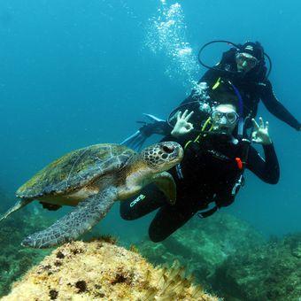 Batismo de Mergulho em Cabo Frio